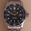 Omega Seamaster Professional 300m Medium