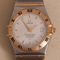 Omega Constellation Large Model